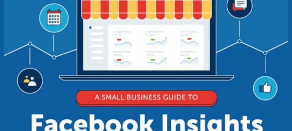 A-Small-Business-Guide-to-Facebook-Insights-Infographic-315