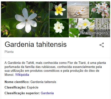 Flor de Tiaré