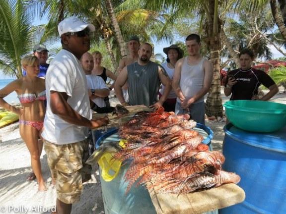 belize fish
