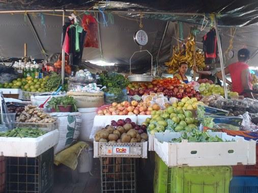 belize vegetables