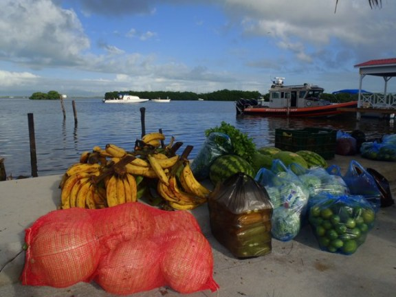 ambergris caye belize fruit market
