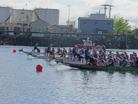 Photo of dragon boat race starting line