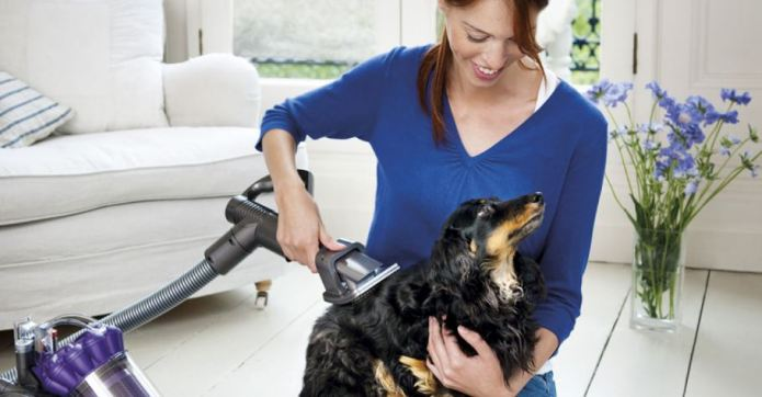 How to Get Rid of Pet Hairs