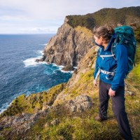 Hiking the Cape Brett Track in New Zealand