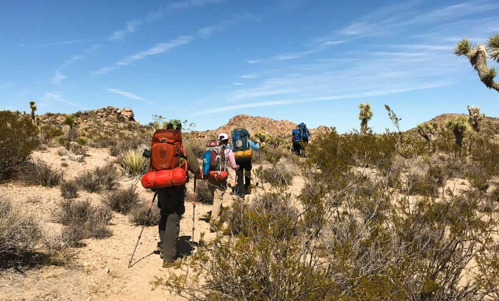 Backpacking For Joshua Tree National Park