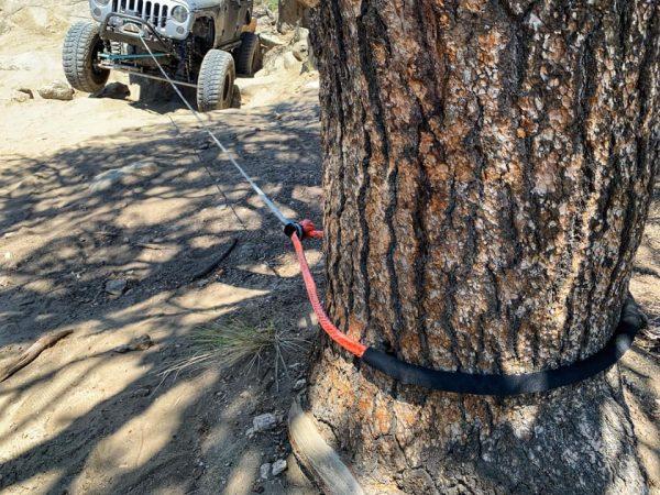 TRE Tree Saver Soft Shackle
