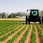 Agricultura Federal otorga $490,055.63 a varios proyectos agrícolas en Puerto Rico