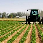 Presidente Comisión de Agricultura pide prioridad para energizar vaquerías en el norte
