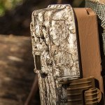 Get The Best Trail Camera For Deer Hunting