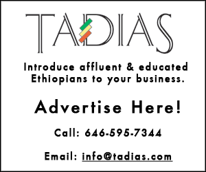 An Appeal to Ethiopians Worldwide: Supporting the