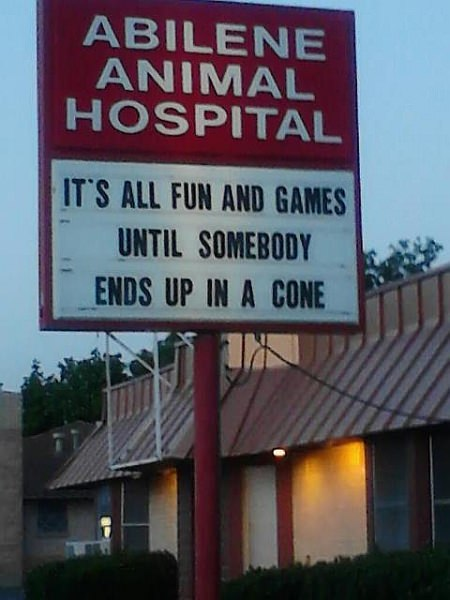It's all fun and games until somebody ends up in a cone