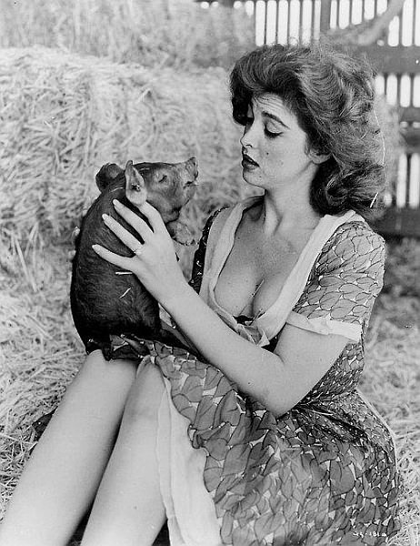 Weird cheesecake of the day: Ginger from Gilligan's Isle smooching up a pig.