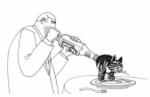 B. Kliban Catsup