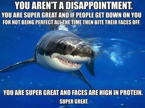 20130617-super-great-shark