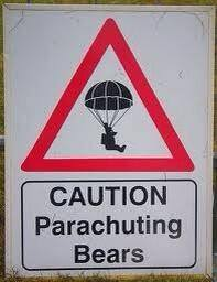 20140721-parachuting-bears
