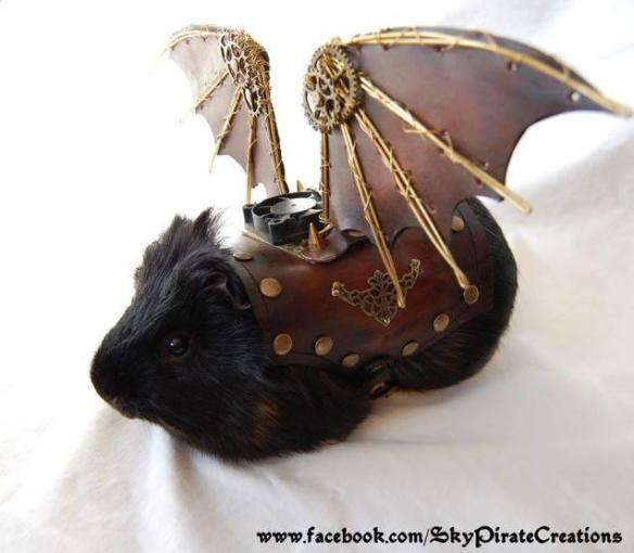 20140906-steampunk-guinea-pig