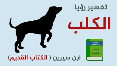 تفسير حلم عض الكلاب
