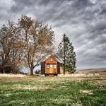 TAG Level - Modern Tiny Houses