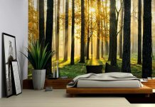 Wall26® View Through the Forest of the Morning Sunrise - Wall Mural