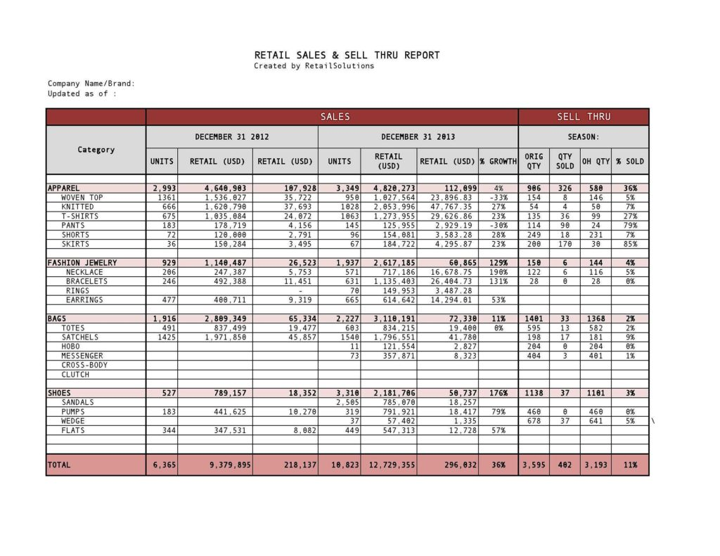 Demand forecasting Excel Template and Retail Sales and Sell Through Report Created Template Showing