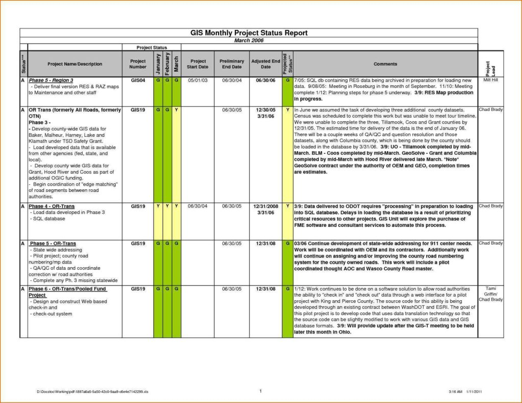 Expense Report Template Excel 2010 and Daily Sales Activity Report Template Excel and Sample Of Sales