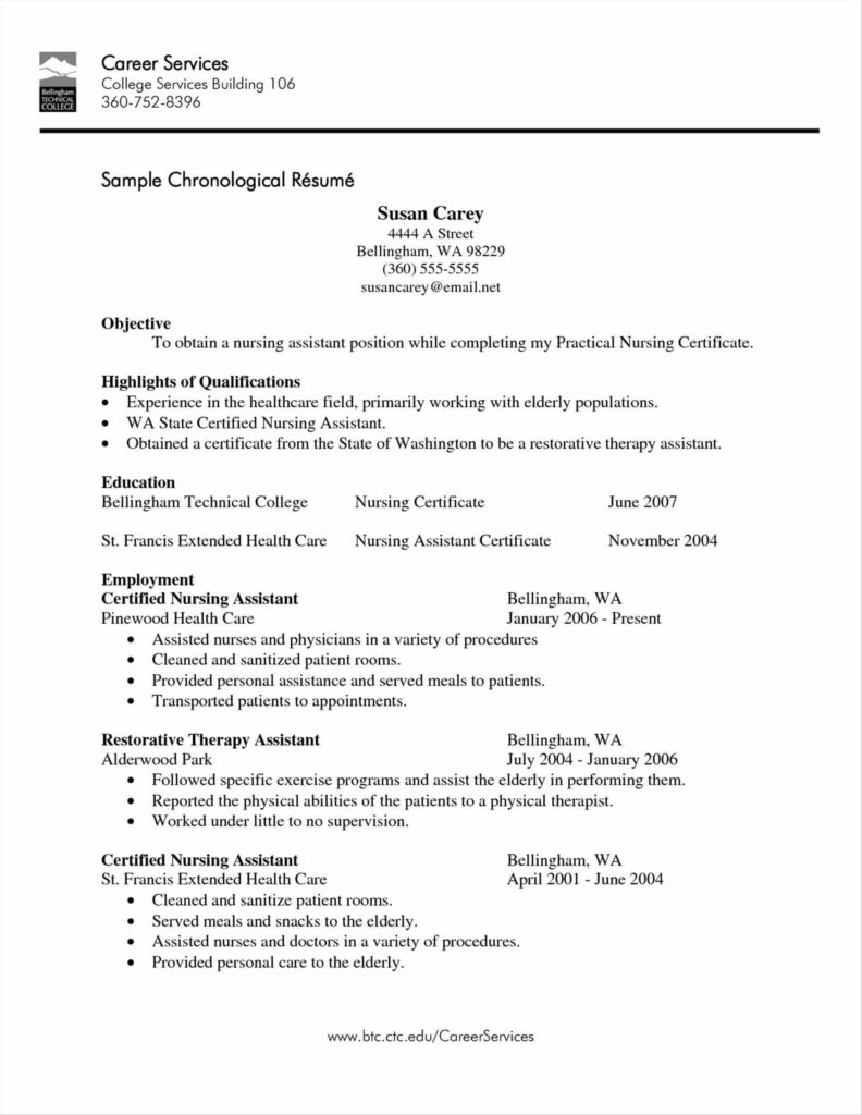 Home Health Care Invoice Template and Health Aide Resume