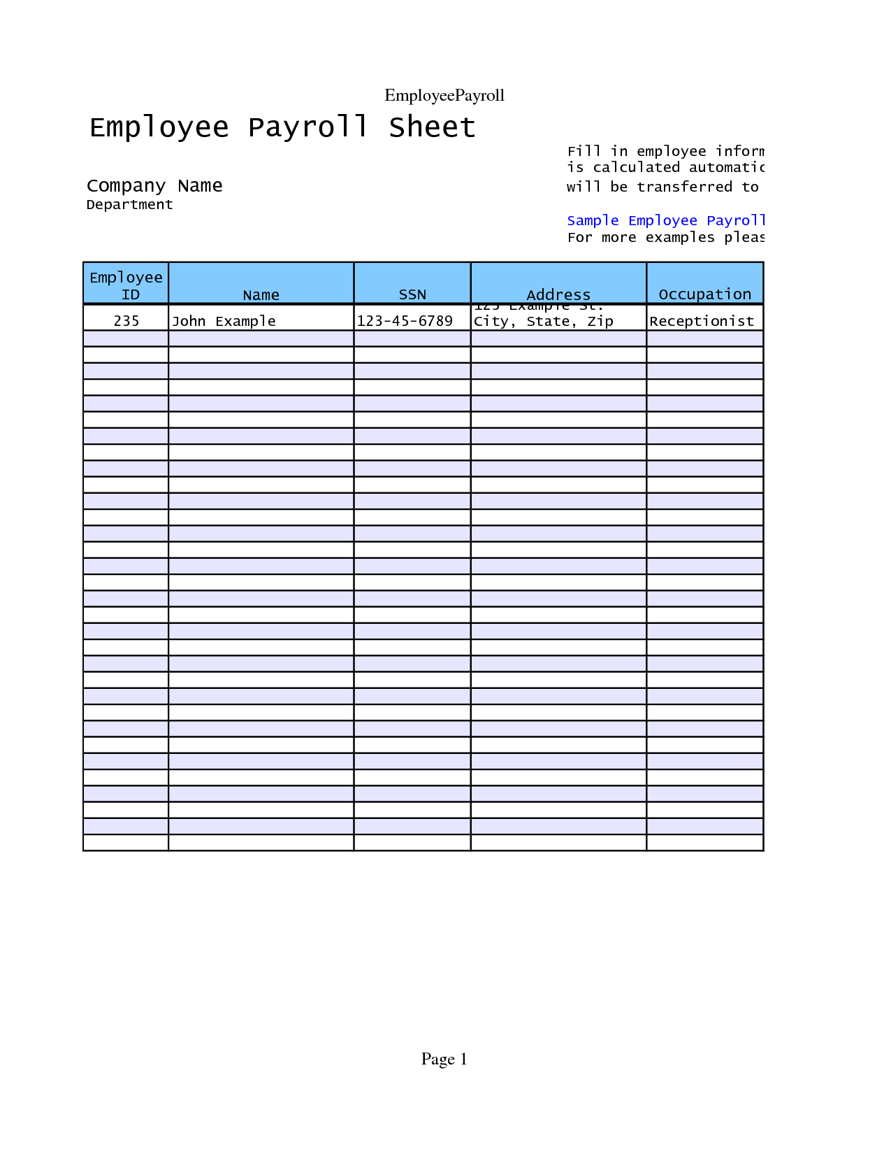 Pay Statement Template and Editable Payroll Slip and Pay Stub Template for Microsoft Word