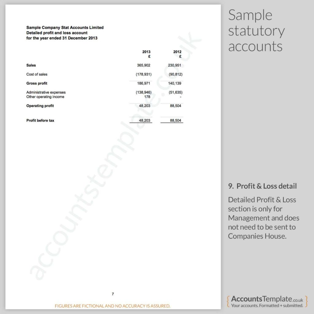 Sample Profit and Loss Sheet and A Guide to the Statutory Accounts format Accounts Template