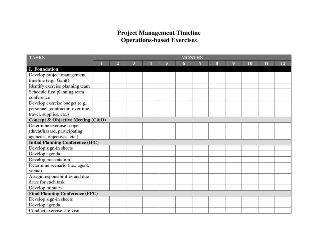 Task Tracking Spreadsheet and 100 Template for Project Timeline 8 Project Management
