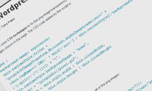 pngfix Wordpress Plugin