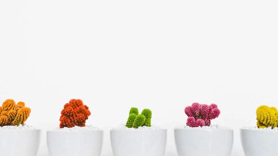 Os 5Ps do Growth Marketing: elementos essenciais para growth hacking