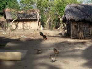 Village refuse