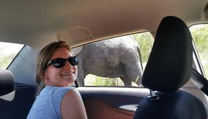 Trisha close to elephant