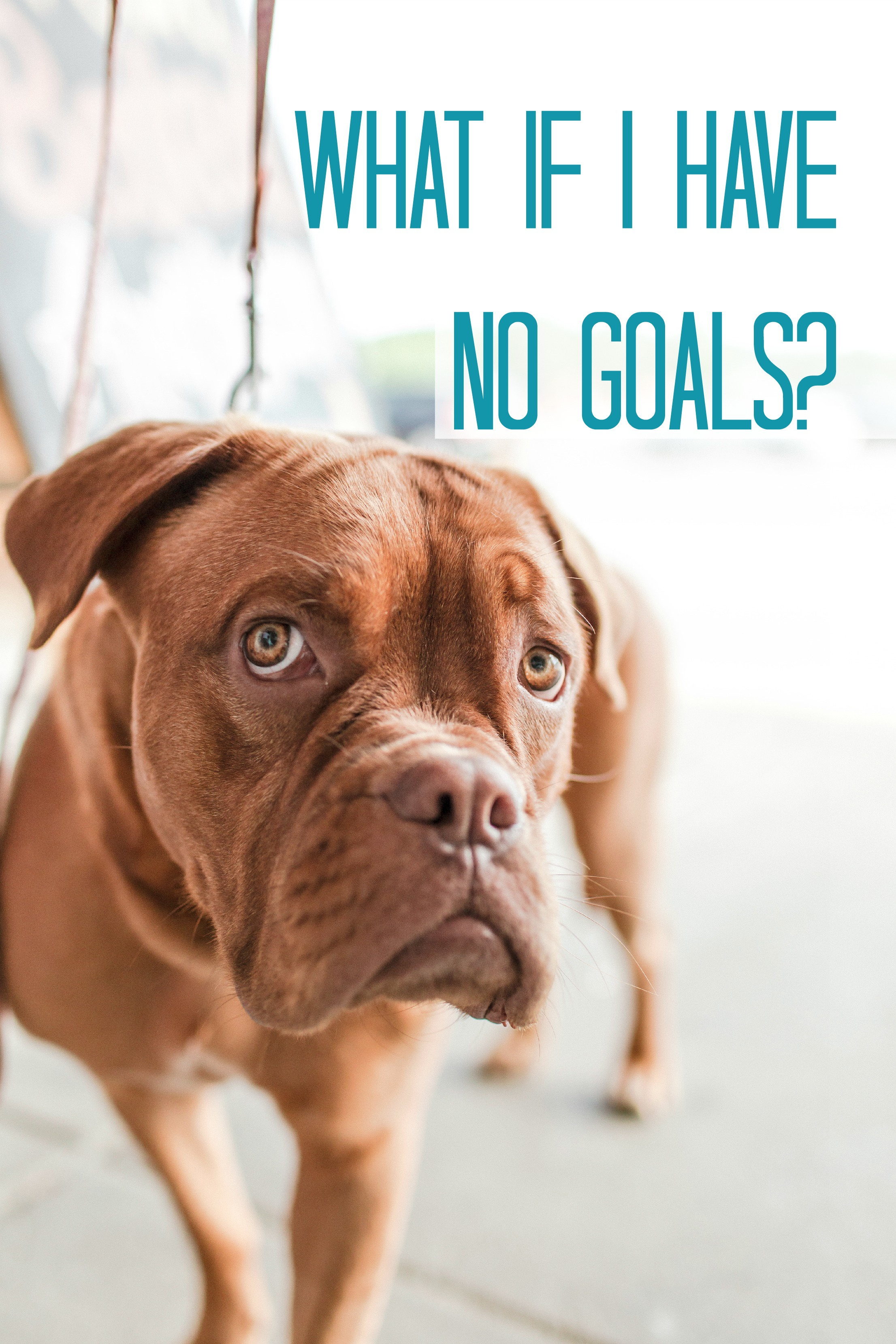 What if I have no goals?