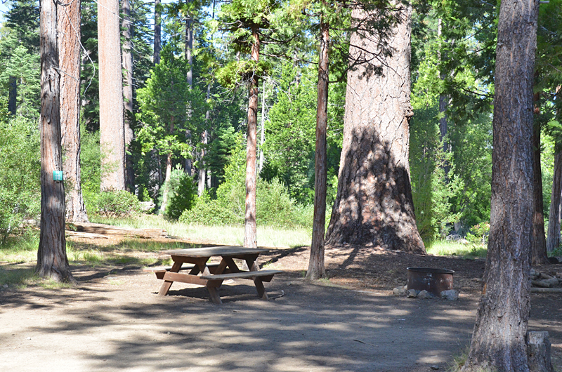 Camp Richardson Campground  Lake Tahoe Guide