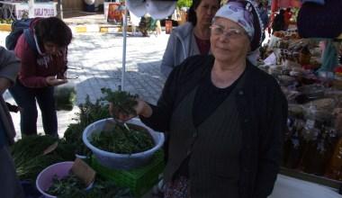 Mart Dokuzu Urla Ot Festivali