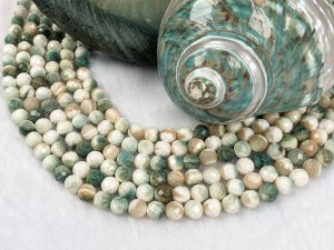 Faceted Round Turbo Shell Bead Strand - Per String