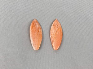 Leaf Lion Paw Shell Loose Piece - Per Pair