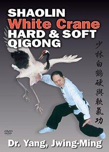 white crane Biały Żuraw