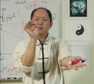 Fa jin tai chi mistrz Yang Jwing Ming w czasie wykładu