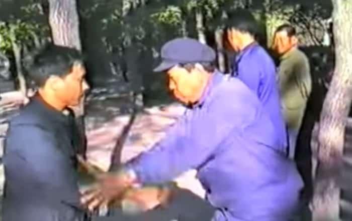 Pchające dłonie – Pekin 1985