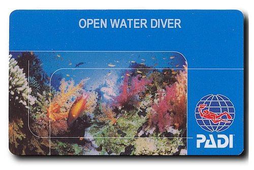 Open water diver pažymėjimas