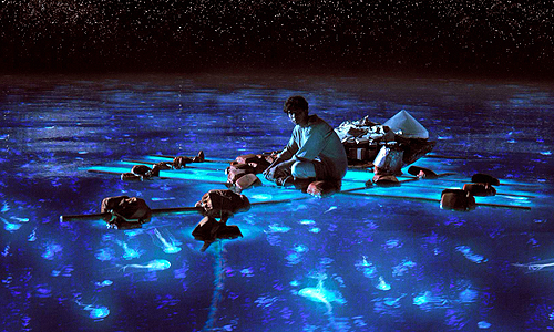 Ang Lee fills 'Life of Pi' with stunning visual and vibrant color