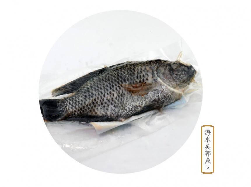 海水吳郭魚 - 臺灣鮮食職人網