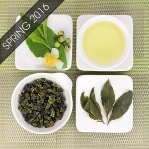 Dayuling High Mountain Oolong Tea Spring 2016