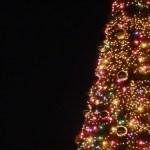 クリスマスの夜に (少年と黒い子猫)