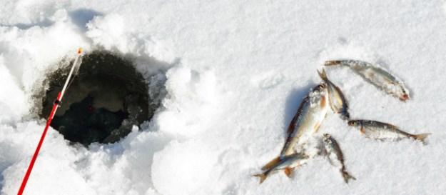 What is ice fishing on lake champlain for Take me fishing lake locator