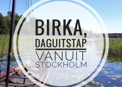 Birka, daguitstap vanuit Stockholm