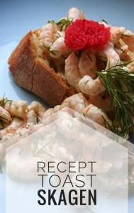 Zweeds recept: Toast Skagen