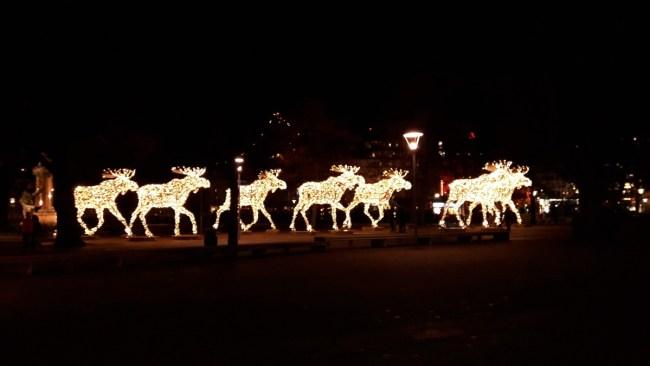 Kerstlichtjes Stockholm